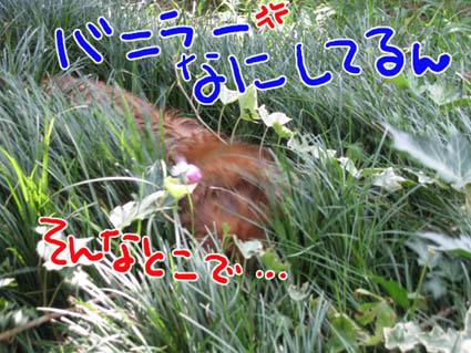 BLOG80204.jpg