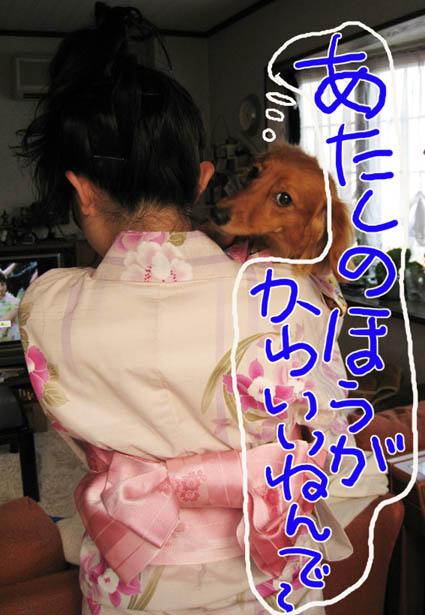 BLOG80206.jpg