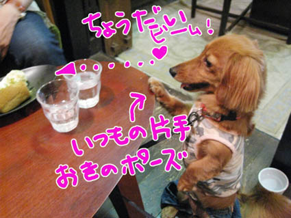 BLOG80406.jpg