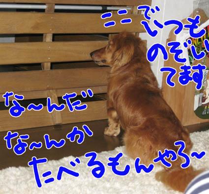 BLOG80501.jpg