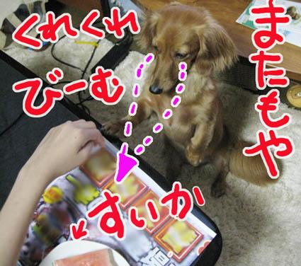 BLOG80503.jpg