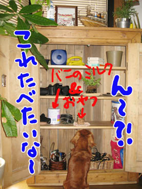 BLOG80702.jpg