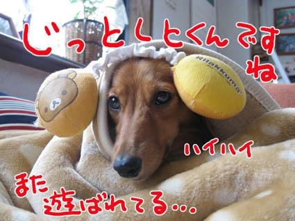 BLOG80801.jpg