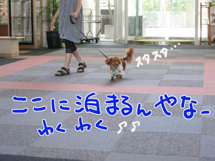 BLOG81606.jpg