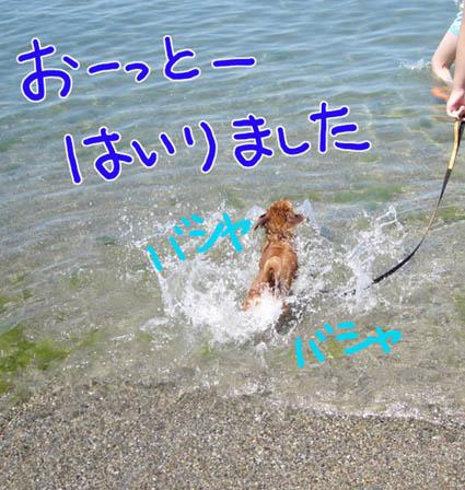 BLOG81607.jpg