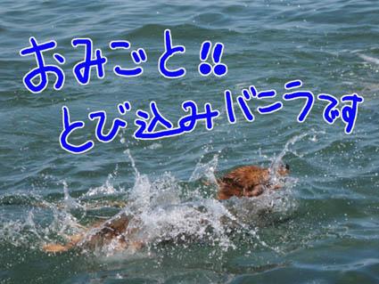 BLOG81701.jpg