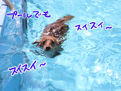 BLOG81901.jpg