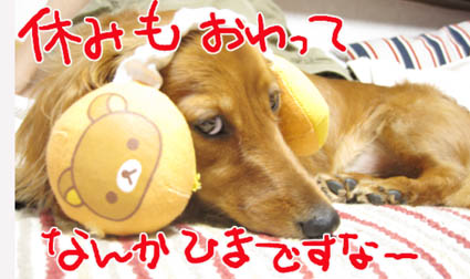 BLOG82107.jpg