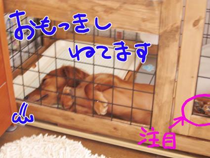 BLOG82202.jpg