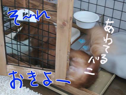 BLOG82206.jpg