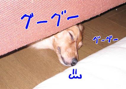 BLOG82601.jpg