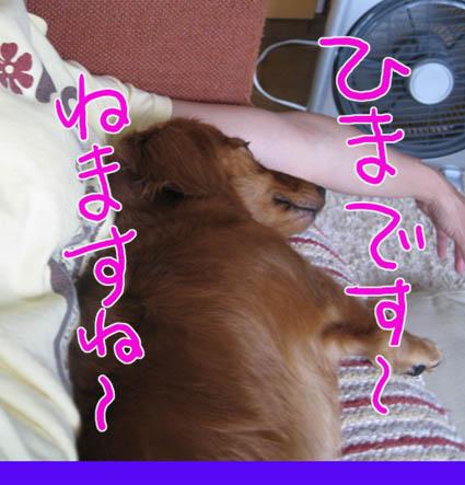 BLOG83003.jpg