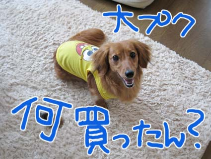 blog720-5.jpg