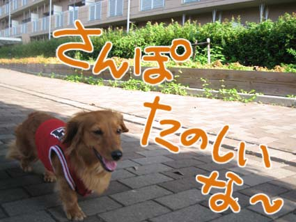 blog720-6.jpg