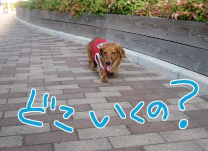 blog720-7.jpg