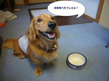 全部食べたの~!