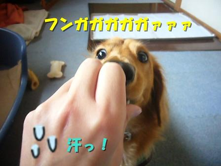 フッガ~ッ!!