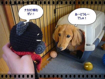ご対~面!