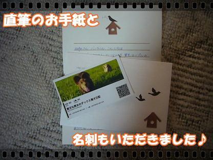 お手紙&カード