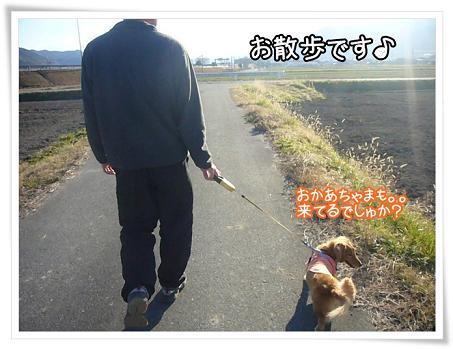 お散歩です★