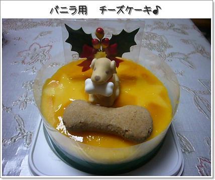 バニラのチーズケーキ♪