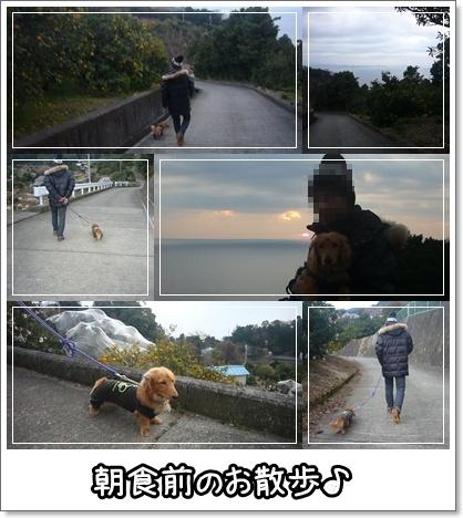 朝のお散歩♪