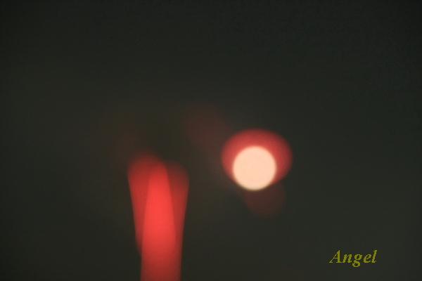 花火Angel3