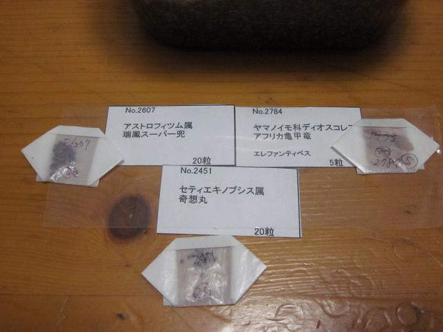 2011042706.jpg
