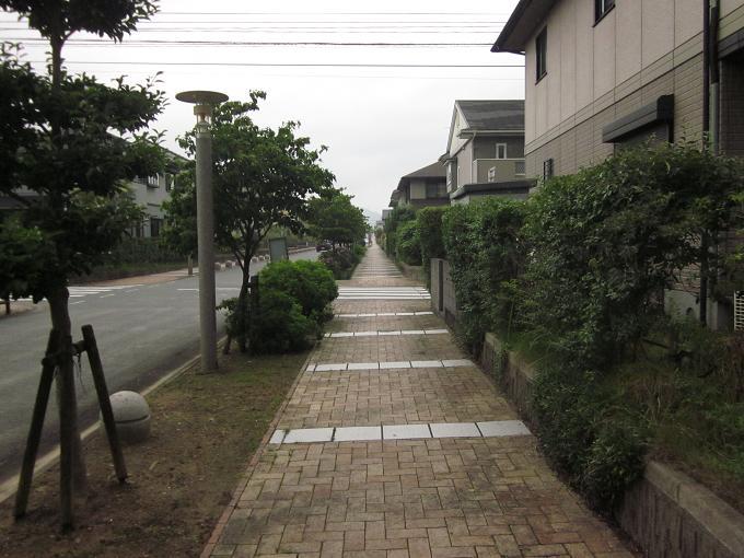 2011070204.jpg