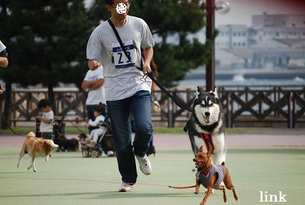link1000m初挑戦!