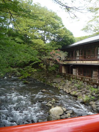 syuzennjikawa_convert_20110910154750.jpg