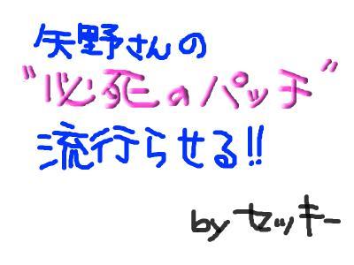 snap_wakayanagi2008_20087623332.jpg