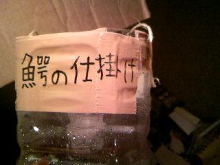 ペットボトル8