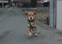 散歩20120222-2