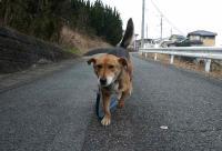 散歩20120128-1