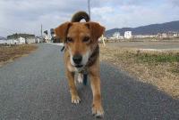 散歩20120131-5