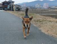 散歩20120221-4