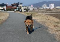 散歩20120224-4