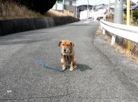 散歩20120226-2