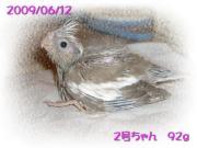 image104.jpg