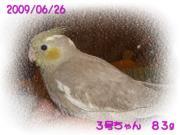 image118.jpg