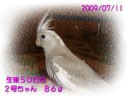 image132.jpg