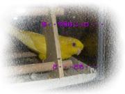 image137.jpg