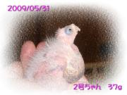 image29.jpg