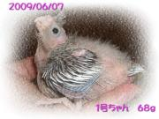 image63.jpg