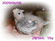 image69.jpg