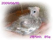 image85.jpg