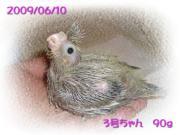 image87.jpg