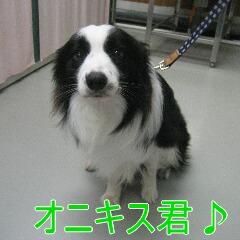 IMG_3064.jpg