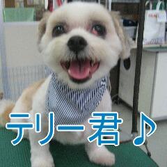 IMG_5033_20090615184939.jpg